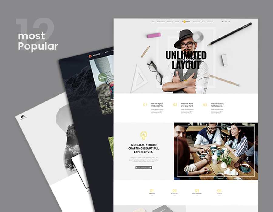 12 Most Popular Multipurpose WordPress Themes That Can Be Suitable For Any Type of Website 2016